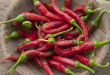 Kapsaicin, ključni sastojak ljutih paprika, može usporiti širenje raka pluća