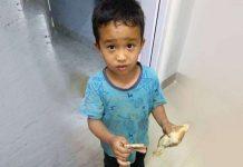 Dječak slučajno pregazio susjedovo pile pa ga odnio u Hitnu