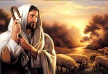 slika Dobrog pastira uči o Kristu