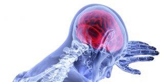 12 namirnica koje neobično utječu na vaš mozak