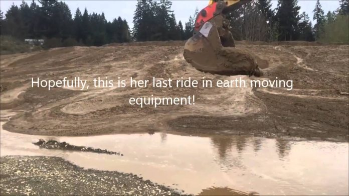 Radnici spasili srnu koja je ostala u dubokom blatu