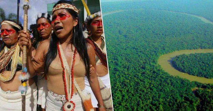 Amazaonsko pleme spasilo šumu