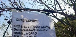 Dalmatinac ostavio simpatičnu poruku lopovu koji mu je stalno krao bademe
