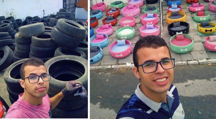 Umjetnik pretvorio tisuće starih guma u predivne krevete za pse lutalice