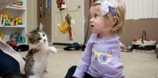Djevojčica nakon teške operacije poželjela mačku