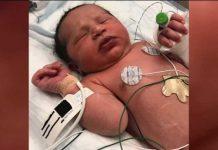 Tisuću ljudi želi posvojiti novorođenče pronađeno u šumi