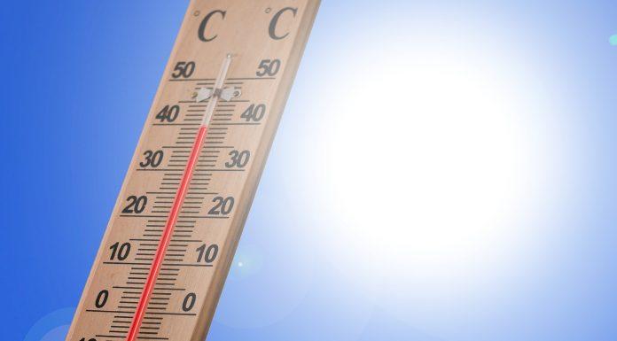 7 načina kako se čuvati od toplinskog udara