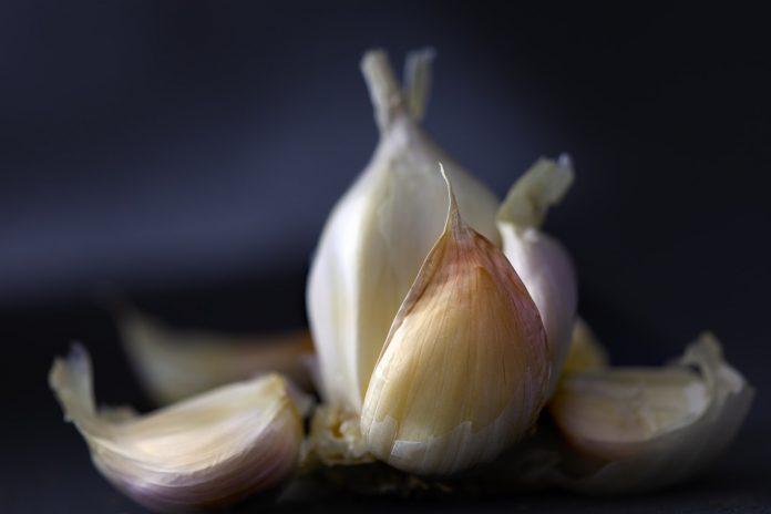 Češnjak na prazan želudac