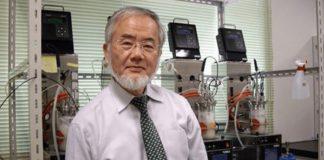 Japanski nobelovac objašnjava što post čini našem tijelu