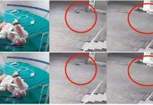 Psi lutalice spasili novorođenče