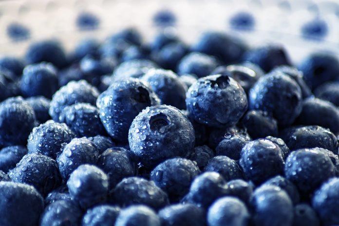 Pametna hrana: Ove namirnice poboljšavaju pamćenje i koncentraciju