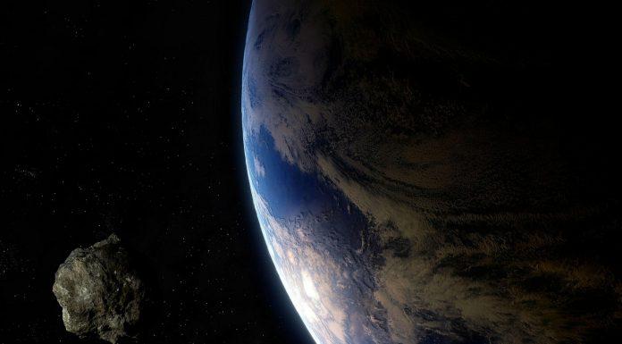 novi asteroid