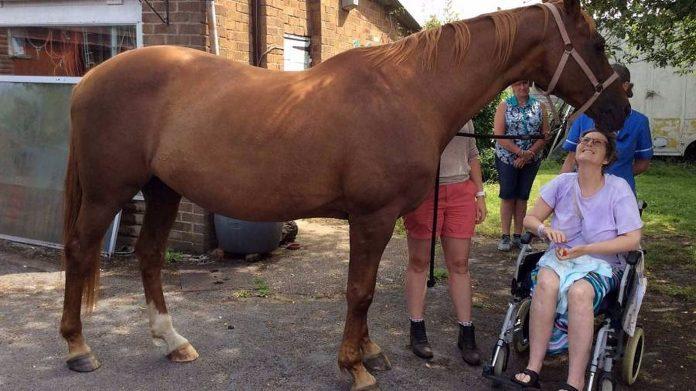 Umiruća žena se oprostila od svog konja i nakon toga je preminula