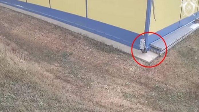 Majka ostavila novorođenče u vrećici iza trgovine, kamere sve snimile