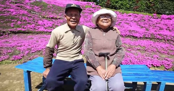 Suprug je posadio tisuće cvjetova kako bi se njegova slijepa žena ponovno nasmijala