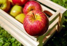 Jabuka je ljekovita: Zbog ovoga je trebate svaki dan jesti!