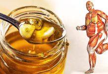 Med i topla čaša vode ujutro