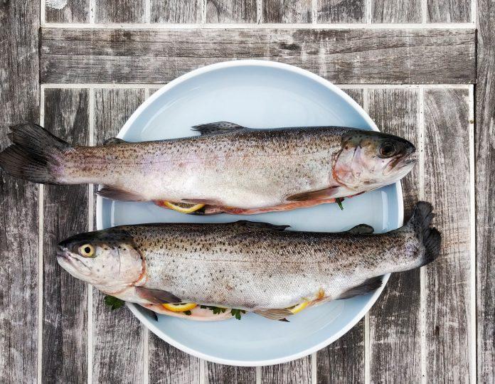 Riba poboljšava zdravlje