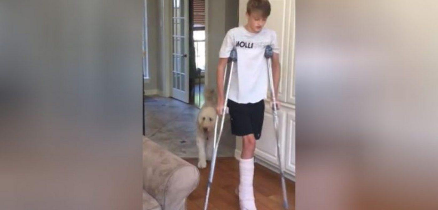 Pas nasmijao internet oponašanjem ozlijeđenog mladog vlasnika