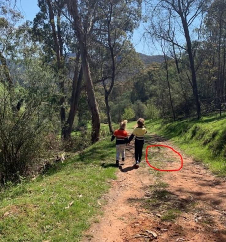 Majka kasnije na fotografiji otkrila da su djeca za dlaku izbjegla smrt 1