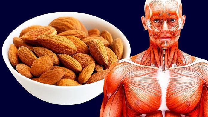 4 stvari koje će se dogoditi vašem tijelu kada počnete jesti bademe