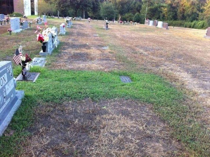 Kada je vidjela grobno mjesto svog sina, odmah je zaplakala 1