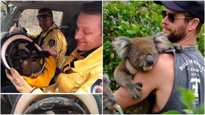 Divne fotografije iz Australije