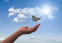 Vjera koja će vas uvesti u vječni život