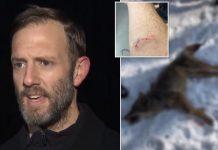 Otac ubio kojota golim rukama nakon što mu je napao sina (2)