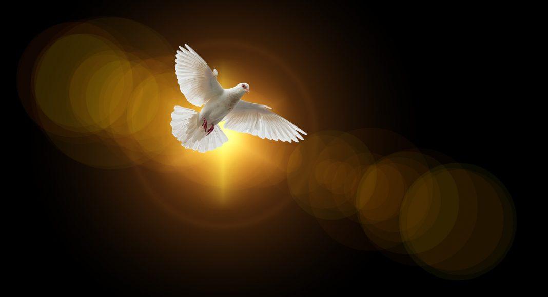 Jesi li primio Duha od Boga?