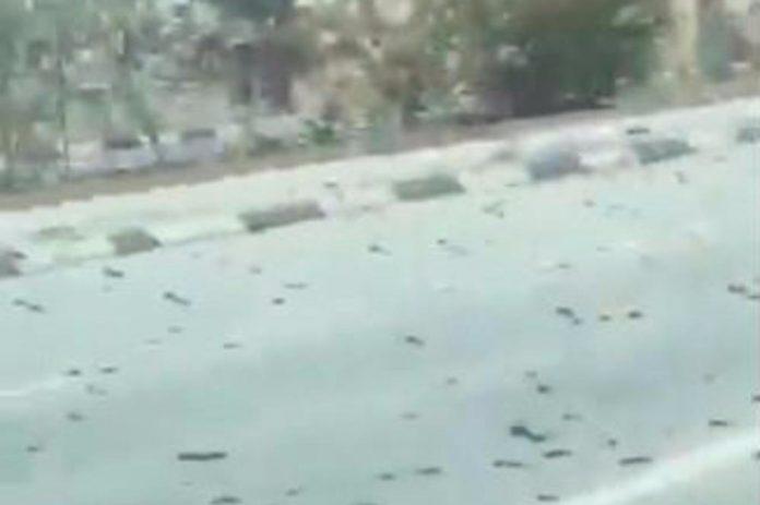 Biblijskoj pošasti nema kraja: Prizori iz Bahreina zapanjili svijet