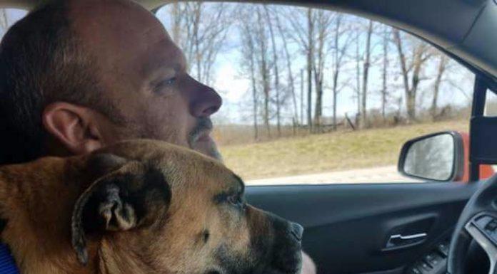 Vozač se iznenadio kada je vidio tko mu je ušao u auto
