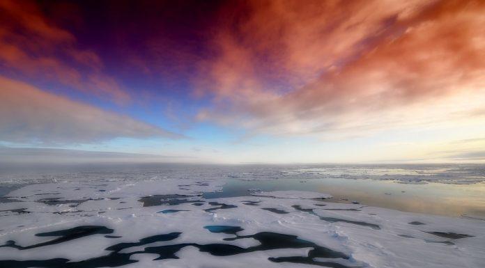 Na Antarktici se dogodila katastrofa koja bi mogla utjecati na cijeli svijet
