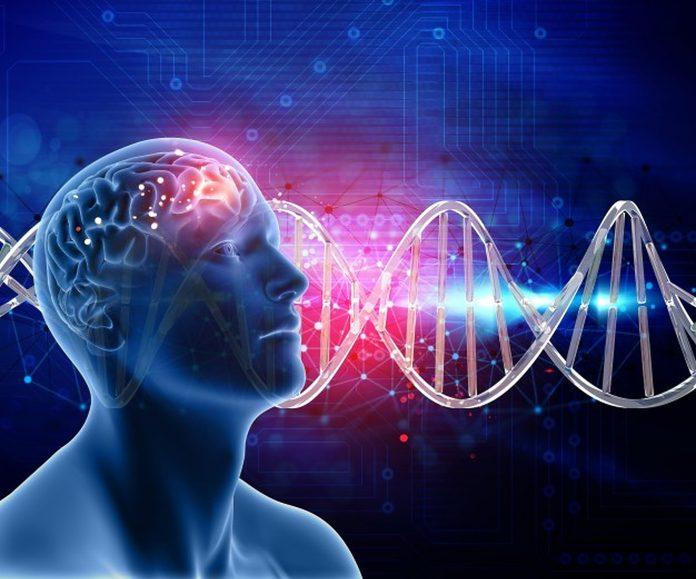 Stvari koje uništavaju zdravlje mozga