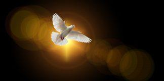 Primite Duha Svetoga, ne odupirite Mu se