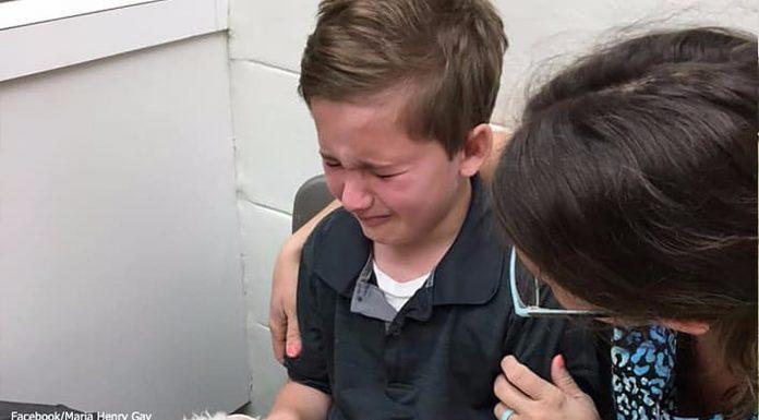 Dječak zlostavlja stare pse