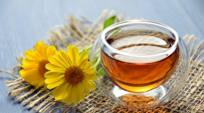 Oblog od meda
