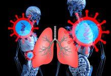 Korona ne napada samo pluća: Još jedan organ je u velikoj opasnosti