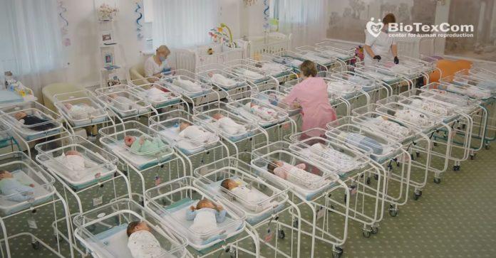 Bebe čekaju roditelje - video iz Ukrajine zgrozio svijet