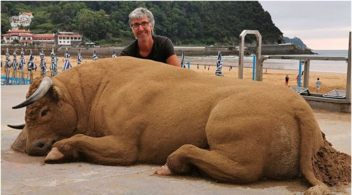 Skulpture životinja od pijeska
