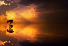 Značenje snova u Bibliji i danas