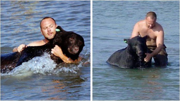 Skočio je u vodu spasiti medvjeda koji se utapao