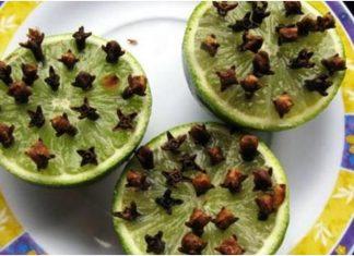 Limun i klinčić prirodno sredstvo protiv komaraca