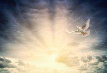 Duh Sveti pomaže u patnji