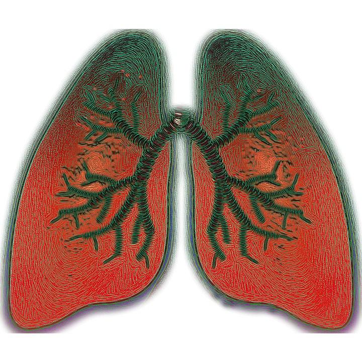 Kako spriječiti astmu