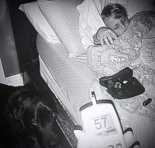 Pas je spasio dječaka