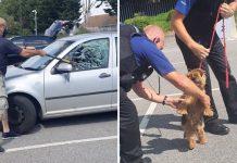 Sjekirom je razbio prozor kako bi spasio psa iz užarenog auta