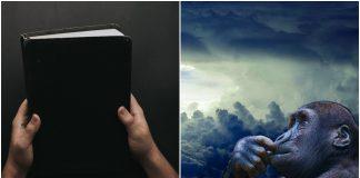 Dopušta li Biblija teoriju evolucije?