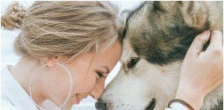Psi ljudsko zdravlje