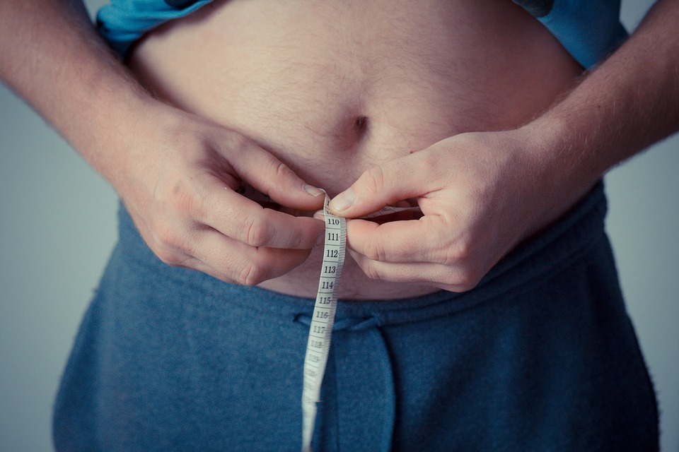 Metabolički sindrom i pretilost